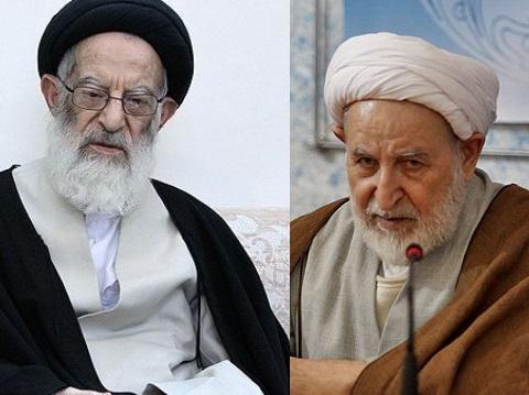 اساتید در این  بیانیهای ضمن حمایت خود از آیات عظام شبیری زنجانی و محمد یزدی نسبت به هر گونه تخریب مرجعیت و بزرگان حوزه واکنش نشان دادند.